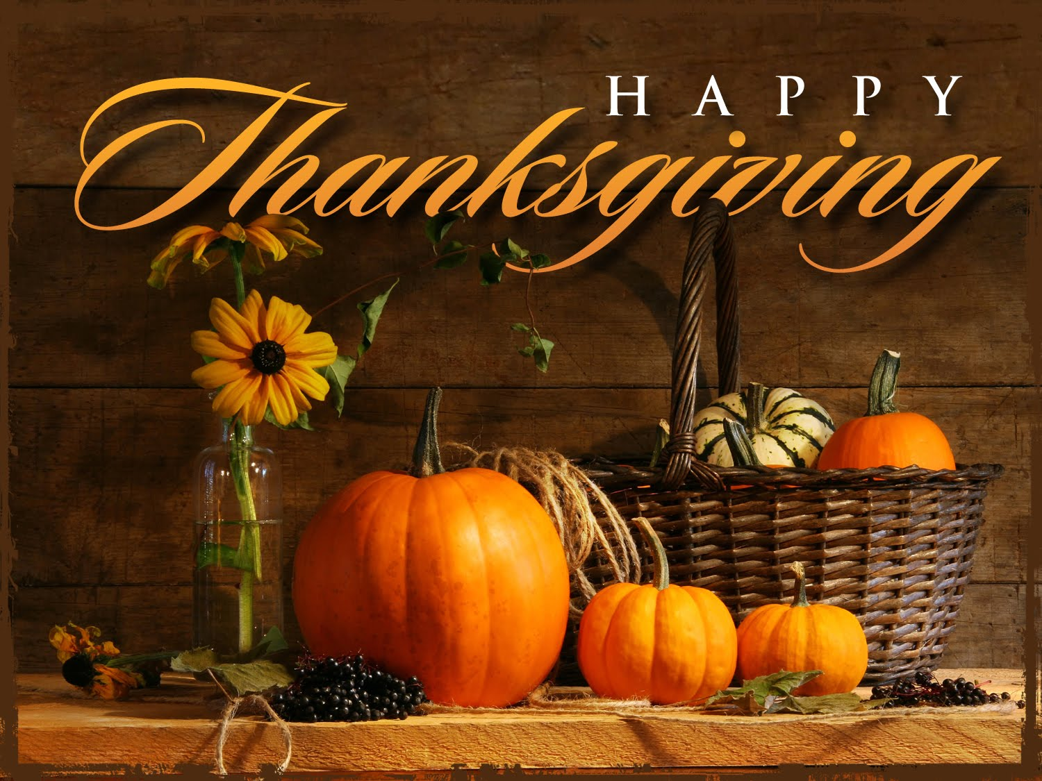 happy thanksgiving national wealth center